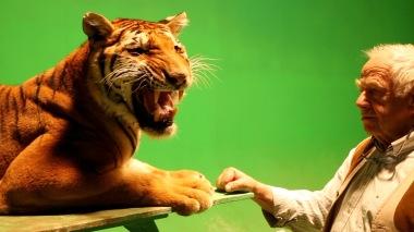 68-Tigresse rugit